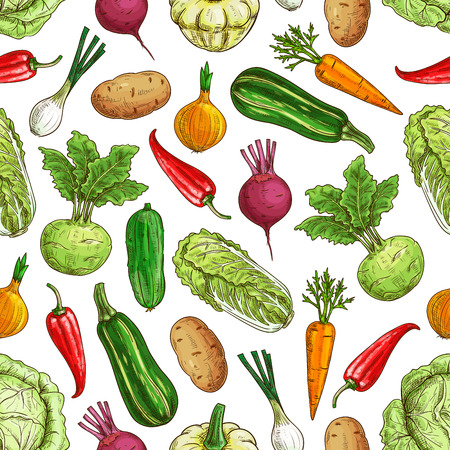 cabbage: Vegetarian seamless pattern with vegetables. Farm fresh vector napa cabbage and zucchini, pepper and carrot, kohlrabi, potato and onion, beet and radish, cucumber. Kitchen decoration pattern Illustration