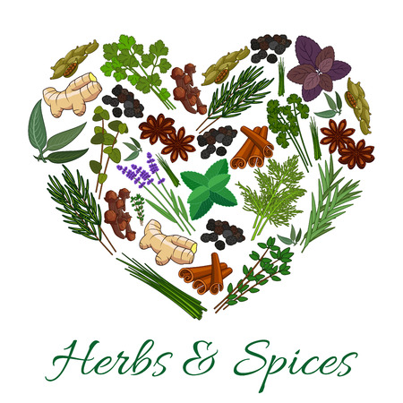 oregano: Herbs and spices icons in heart shape emblem. Vector spicy elements of ginger, basil, oregano, coriander, parsley, dill, thyme, mint and cinnamon, cloves and marjoram, tarragon and lemongrass, cilantro and rosemary
