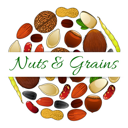 Nutritious nuts and grains elements vector round label with text. Natural healthy coconut, almond, pistachio, cashew, hazelnut, walnut, bean, peanut, sunflower, pumpkin seeds. Vegetarian protein raw products sticker