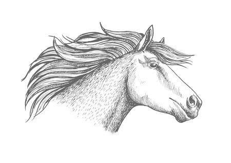 Horse head sketch sport emblem. Proud white horse trotter racing fast. Equine stallion label for horse racing club, hippodrome