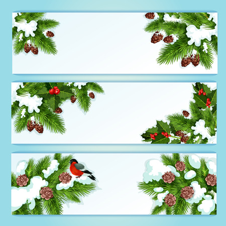 pine decoration: Christmas tree and holly berry festive banner set with snowy holly, fir and pine branches with red berry, bullfinch and pinecone. Winter holiday decoration, New Year label design