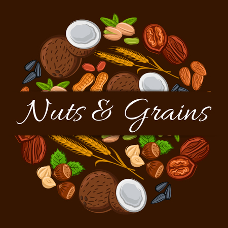 Nuts and grains in round shape emblem. Nutritious coconut, almond, pistachio, cashew, hazelnut, walnut, bean pod, peanut, sunflower, pumpkin seeds. Vegetarian healthy raw food eating for banner, sticker design