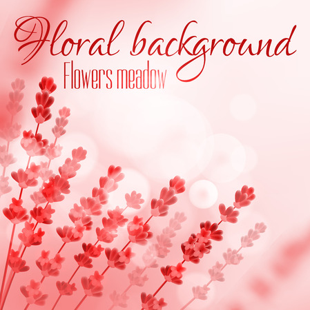 flower blooming: Floral background with flower meadow. Vector design for perfume, aroma therapy, soap, cosmetic, perfumery products. Provence field of blooming flowers on red blurred sunny background Illustration