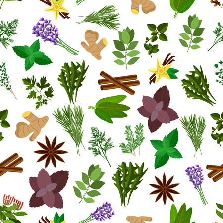 dill: Fresh kitchen herb and spice seamless pattern with parsley, basil, mint, vanilla, cinnamon, ginger, thyme and dill, rosemary and anise star, bay leaf, cloves, lavender, arugula and sage