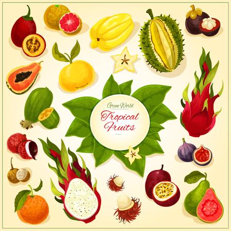 Fruits icons. fruit emblem of isolated tropical and exotic juicy fresh durian, dragon fruit, guava, lychee, feijoa, passion fruit maracuya, figs and rambutan, mangosteen and orange, papaya Illustration