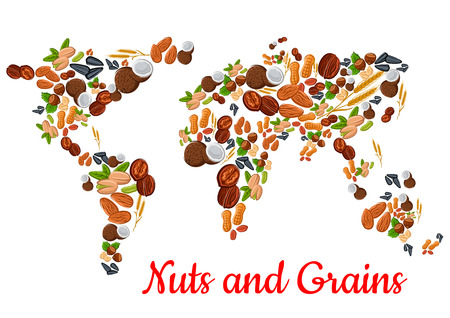 Nuts and grains world map. nut, grain, kernels, natural nutritious coconut, almond, pistachio, cashew and hazelnut, walnut and bean pod, peanut and sunflower, pumpkin seeds. Vegetarian healthy raw food concept