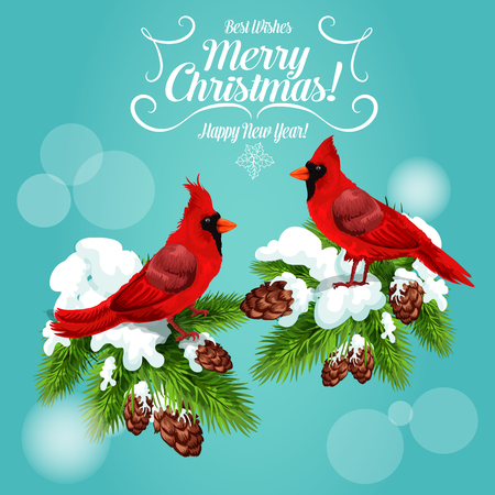 Christmas cardinal bird winter holidays greeting card. Red cardinal sitting on snowy pine branch with cones and vignette frame with text Merry Christmas and Happy New Year. Festive poster design