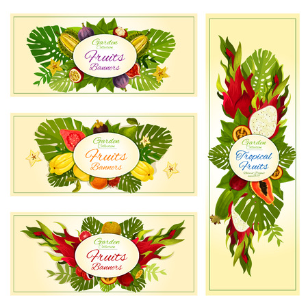 exotic fruit: Tropical fruit banners with orange, exotic dragon fruit, feijoa, papaya, carambola and durian, passion fruit, guava, fig, lychee and mangosteen, tamarillo, rambutan and palm leaves Illustration