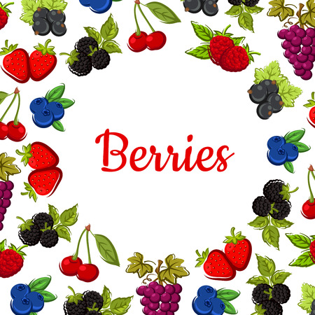 Berry and fruit background with fruity frame composed of strawberry, cherry, grape, blueberry, raspberry, blackberry, currant and bilberry fruits with leaves and grapevines Illustration