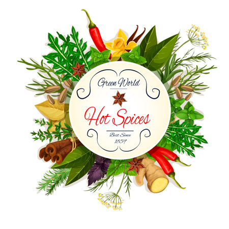 rosemary: Spice and herbs poster with chilli pepper and basil, mint, dill, anise, ginger, rosemary and thyme, cinnamon and bay leaf, arugula and fennel, tarragon. Condiment, seasoning, spices and herbs cooking design elements
