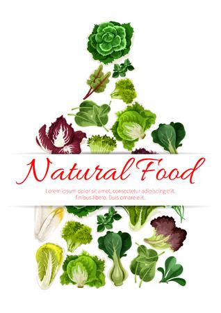 Snijplank bestaat uit groene groenten en salades. Sla, spinazie, chinese kool en waterkers salade, ijsbergsla, paksoi, rucola, witlof en veldsla, batavia en radicchio, snijbiet, zuring