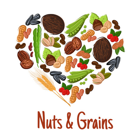 coffee bean: Nut, grain, seed and bean heart poster. Peanut, fresh and roasted coffee, hazelnut, almond, walnut, pistachio, green pod of pea and bean, wheat ear, coconut and sunflower seed. Vegetaian food design