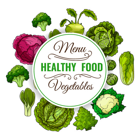 Healthy food menu. Vegetables poster. Vegan raw organic cabbage, broccoli, red cabbage, kohlrabi, chinese cabbage napa, brussels sprouts, cauliflower, bok choy, pak choi, kale, leafy cabbage vegetables