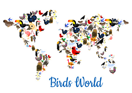 pigeon owl: Birds world poster in shape of world map with continents. Vector flamingo, peacock, sparrow, pigeon, owl, swallow, ostrich, colibri, swan, swallow, parrot, eagle, woodpecker, pigeon, falcon, dove, toucan, turkey, gull. Wild forest exotic birds