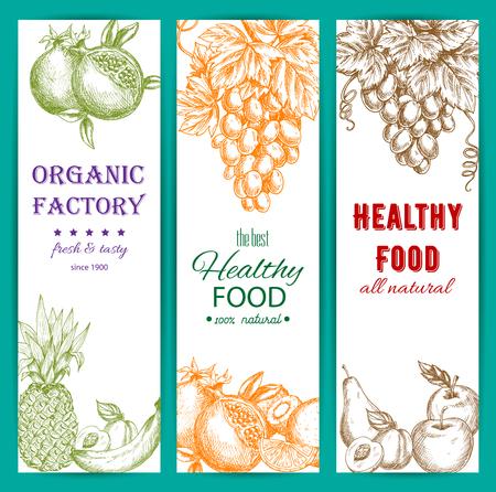 grape fruit: Fruit sketch banners set. Healthy organic fruit food. Vector fresh farm harvest fruits of orange, citrus lemon, grape bunch, pomegranate, apple, apricot, pear, tropical pineapple, banana, kiwi