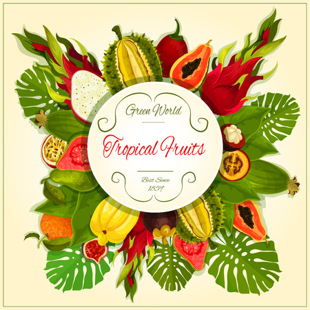 Tropical fruits poster. Vector exotic juicy fruits durian, orange, papaya, carambola, dragon fruit, guava, lychee, feijoa, passion fruit maracuya, rambutan, mangosteen in bunch of palm leaves