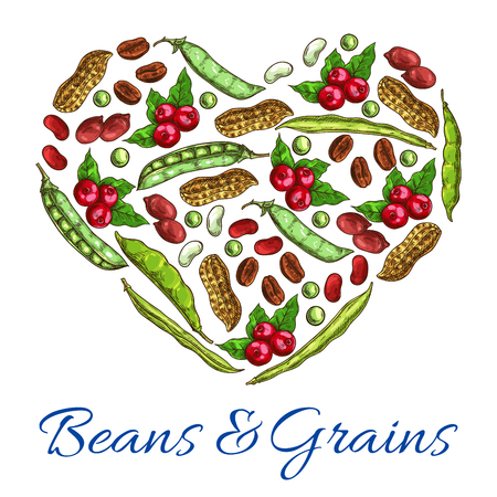 legume: Heart of beans, grains. Vector symbol of nuts, coffee beans, peanuts in shell, beans and green peas, legume pods. Poster with plants seeds for vegetarian and vegan vegetable food nutrition or cuisine