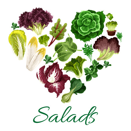 Vegetable greens heart symbol made up of fresh salad leaves of lettuce, pak choi and spinach, chinese cabbage and cress salad, iceberg, corn salad, radicchio and arugula, chicory, chard and batavia, sorrel Stock Vector - 67686816
