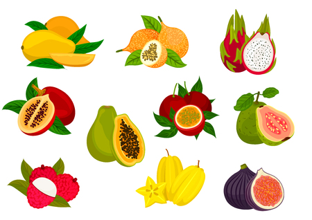 lychee juice: Exotic fruit isolated icon set with tropical mango, papaya, carambola, passion fruit, lychee, dragon fruit, fig, guava, tamarillo. Food and juice packaging design