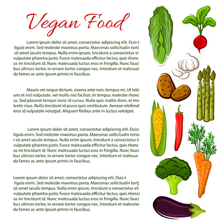 napa: Vegan healthy food poster. Vegetarian nutrition information. Vector infographics with vegetables radish, chinese cabbage, garlic, corn, potato, asparagus, corn, chili pepper, carrot, broccoli, eggplant Illustration
