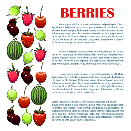 Berries infographic. Isolated vector berry icons of watermelon, cherry, strawberry, raspberry, black currant, gooseberry. Copy space placard, leaflet template for farm and garden fresh berry information Illustration