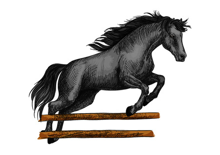 jumping fence: Brown arabian stallion running and jumping over barrier. Color horse vector sketch for equestrian sport racing, horse riding, equine races bets design
