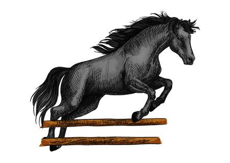 Bruine Arabische hengst die en over barrière loopt springt. Kleur paard vector schets voor hippische sport racen, paardrijden, paarden races weddenschappen ontwerp