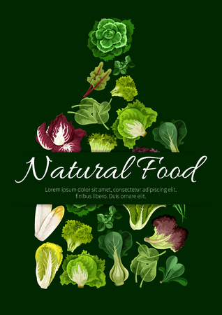 Leafy salad greens symbol. Vegetarian natural food poster with vector lettuce vegetables arugula, chicory salad and spinach, lollo rossa, radicchio, swiss chard salad with batavia and gotukola, mangold kale and collard, romaine, pak choi, sorrel