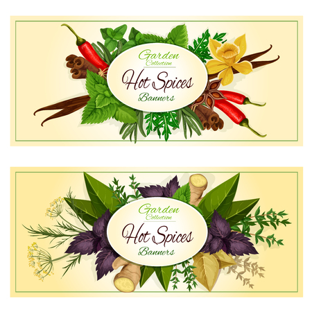 seasonings: Hot Spices banners of spicy herb seasonings and herbal culinary condiments green basil, sage and bay leaf, red basil and rosemary, thyme and ginger, cinnamon and dill, vanilla and mint leaves, cumin, anise and oregano, chili pepper and tarragon