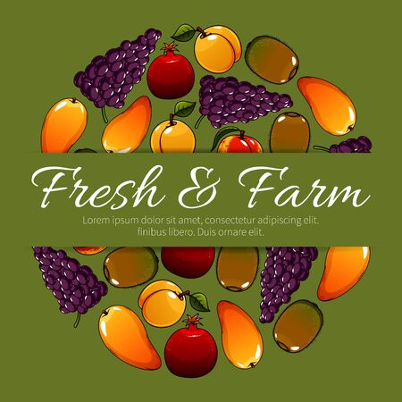 grape fruit: Fresh farm fruits. Vector fruit poster with ripe fruit harvest of juicy tropical mango and exotic kiwi, red grape with pomegranate, sweet apricot or peach. Delicious and healthy organic fruits