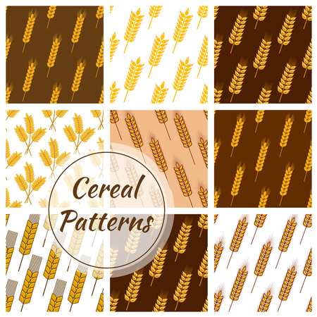 corny: Wheat and rye ears patterns of oat cereal, millet grain, malt grain, spike, barley grain. Vector seamless background for bakery, pastry or grocery shop, beer bar or brewery pub tiles design