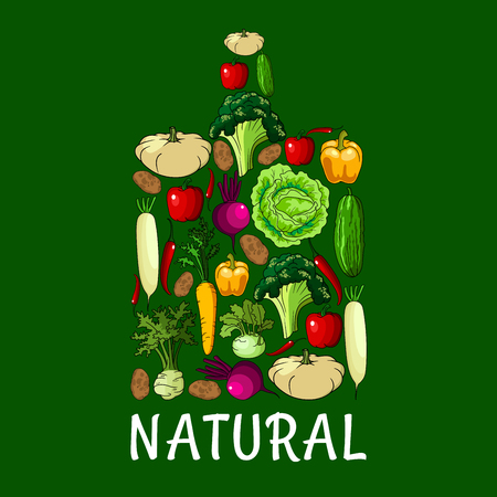 napa: Natural healthy vegetables. Cutting board symbol with vector vegetable cabbage, onion, kohlrabi, pepper, zucchini, celery, daikon radish and carrot, beet and potato, broccoli