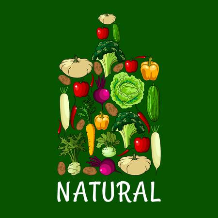 dikon: vegetales saludables naturales. Cortar símbolo bordo con la col vector vegetal, cebolla, coles, pimientos, calabacín, apio, rábano daikon y zanahoria, remolacha y patata, brócoli