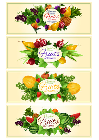 grape fruit: Fruit and berry banner set with apple, strawberry, orange, grape, pineapple, peach, plum, watermelon, mango, pear, melon and leaves placed around oval frame with copy space