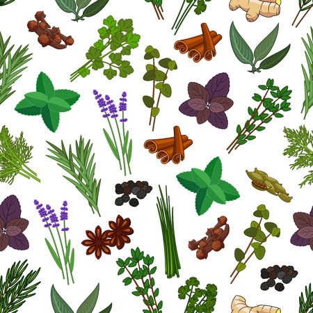 Herbs and spices seamless pattern. Vector patterns of mint, cinnamon, thyme, ginger, ginger and cloves, marjoram and tarragon, lemongrass and sage, basil and lemon balm, oregano, parsley and dill, cilantro, coriander