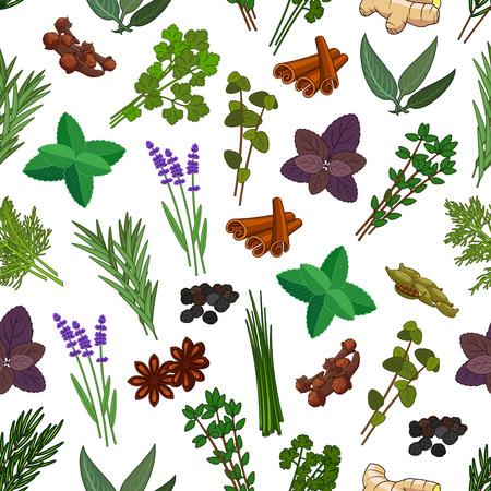 Zioła i przyprawy bezszwowe wzór. Wzory wektorowe mięty, cynamonu, tymianku, imbiru, imbiru i goździków, majeranku i estragonu, trawy cytrynowej i szałwii, bazylii i melisa, oregano, pietruszki i koperku, cilantro, kolendra