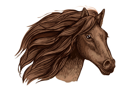 Horse head vector isolated icon. Symbol for equine horse racing sport. Brown mare or stallion with wavy mane. Wild horse run in wild freedom Illustration