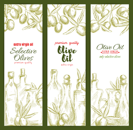 oil crops: Olive oil banner set with sketched fruit and branches of olive tree and bottles of extra virgin olive oil. Food packaging, healthy nutrition, label design