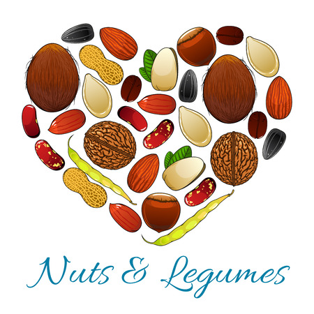 Heart with nuts, legume and seed. Peanut, coffee bean, pistachio, almond and walnut, hazelnut and bean pod, sunflower and pumpkin seed, coconut. Healthy snack food, vegetarian nutrition design