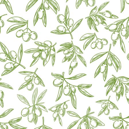 italian cuisine: Olive fruit seamless pattern background. Sketched branches of olive tree with fruit and leaves seamless pattern for healthy food and agriculture harvest design