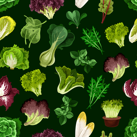 Leaf vegetable, salad greens and potherb seamless pattern with fresh lettuce, spinach, cress salad and iceberg, cos lettuce and corn salad, pak choy and arugula, chicory and chard, batavia, sorrel, radicchio