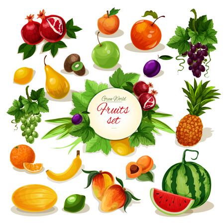 banana leaf food: Organic fruit poster. Tropical and garden apple, orange, pineapple, grape, banana and peach, mango and lemon, plum, watermelon and pear, apricot and kiwi, melon and pomegranate with leaf and vine for food design