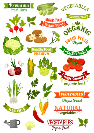 tomatoes: Vegan and vegetarian vegetable food shop vector isolated icons and ribbons set with potato, cauliflower and corn, chili pepper and zucchini squash, kohlrabi, tomato and onion leek. Organic fresh greens dill, parsley and sage. Farmer market emblems Illustration