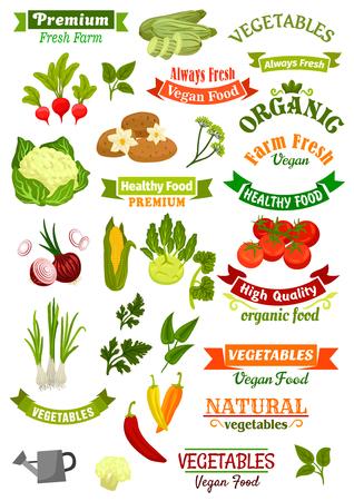 Veganos y de la tienda de comida vegetariana vegetales iconos y cintas aislados conjunto de vectores con la patata, la coliflor y el maíz, el chile y el calabacín, coles, tomate y puerro. frescas orgánicas verdes eneldo, perejil y salvia. emblemas del mercado de agricultores