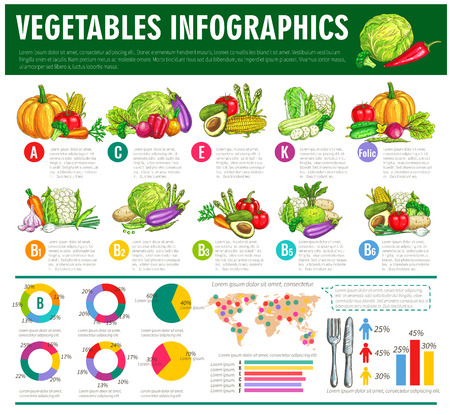 Vegetables infographics. Vector graph charts or diagrams of consumption, vitamines or veggies nutrition facts. Vegetarian healthy food statistics of squash, avocado and cabbage, beet, cucumber and tomato, pumpkin, potato and pepper, carrot and corn