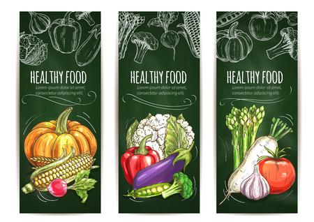 Vegetable sketch banner on blackboard. Healthy food banner set of tomato and pepper, garlic and eggplant, corn, pumpkin, cauliflower and broccoli, pea and radish, asparagus. Organic food shop, farm market design