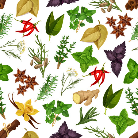 Spicy herbs and herbal spices vector seamless pattern of seasonings cinnamon, dill, anise and oregano, ginger and vanilla with mint, cumin and chili pepper, tarragon, red and green basil, sage and bay leaf and rosemary, thyme Illustration