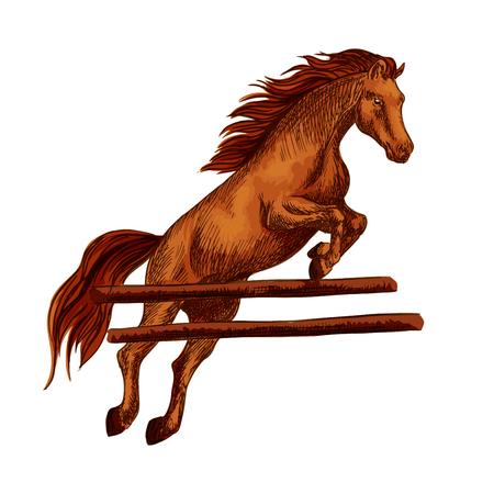 cavallo che salta: Brown Mustang araba saltare oltre barriera e in esecuzione su corse di cavalli. Disegno vettoriale cavallo stallone per la corsa sport equestre, equitazione, razze equine o razze scommesse progettuali