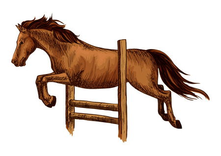 fences: Horse racing and jump over barrier. Equine horse racing sport symbol. Arabian brown mustang jumping over fence