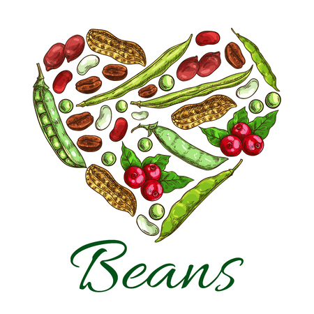 Nuts, beans and grains in shape of heart. Poster with nuts, coffee beans, peanuts in shell, beans, green peas, legume pods. Symbol design with plants seeds for vegetarian and vegan vegetable food nutrition or cuisine Illustration